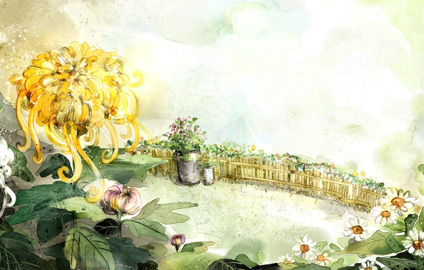 Picture flowers, figure, the fence, chamomile, bucket, chrysanthemum