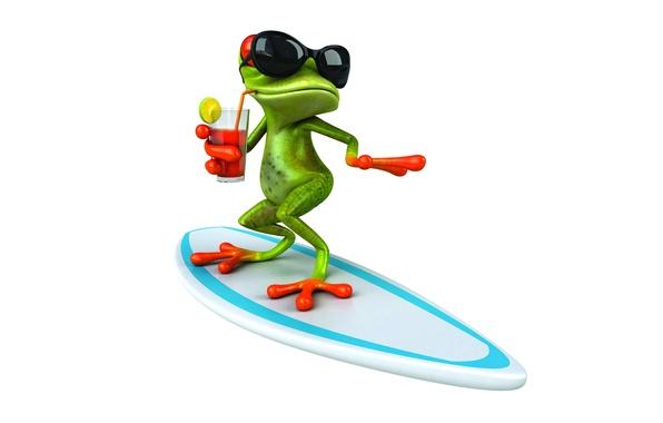 Picture frog, frog, surf, funny, glasses