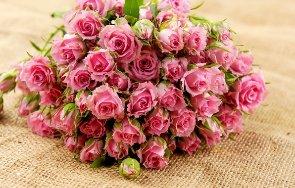 Picture leaves, flowers, roses, bouquet, petals, pink, buds