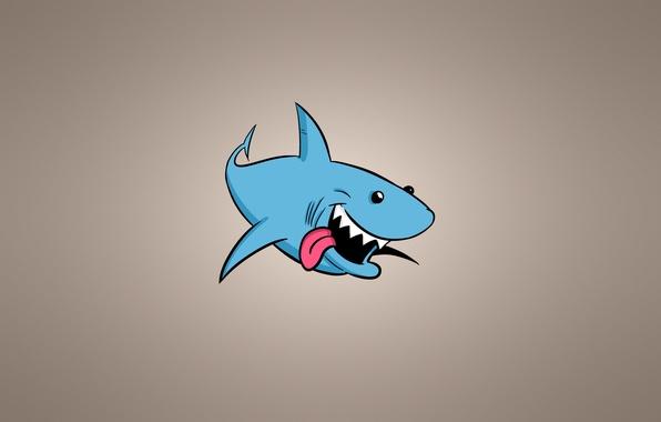 Picture minimalism, fish, shark, light background, shark, fish