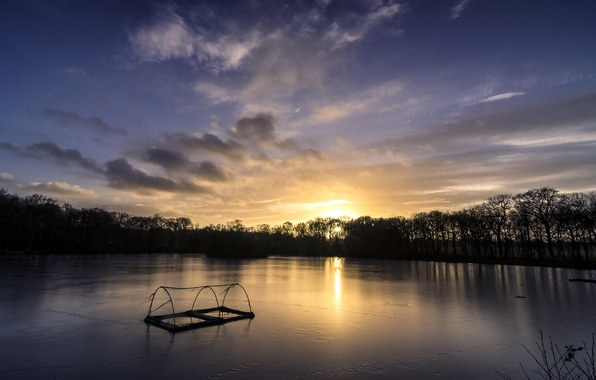 Picture forest, the sky, clouds, trees, sunset, river, shore, England, the evening, UK, Yorkshire, Leeds