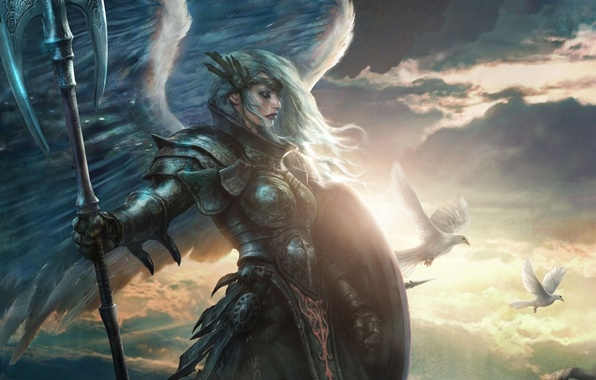 Picture girl, birds, weapons, wings, angel, art, pigeons, shield