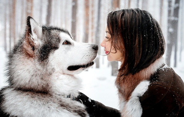 Picture GIRL, LOOK, SNOW, SMILE, DOG