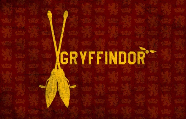 Picture Harry Potter, broom, Harry Potter, Gryffindor, Gryffindor, Snitch