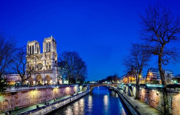Picture water, light, trees, night, bridge, the city, reflection, river, France, Paris, Hay, Paris, Notre Dame …