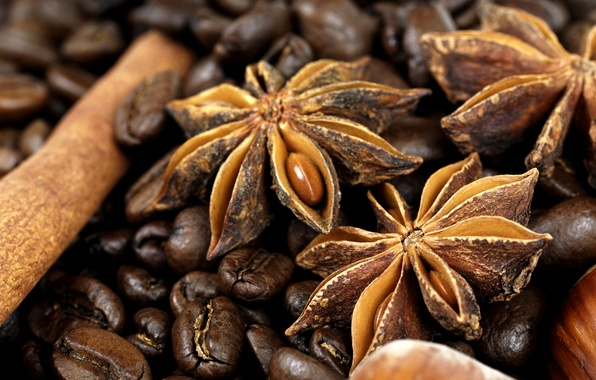 Picture coffee, grain, cinnamon, coffee, spices, Anis