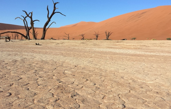Picture sand, desert, Africa, Namibia