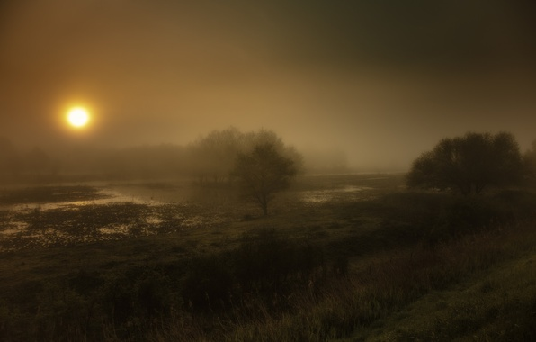 Picture night, fog, river