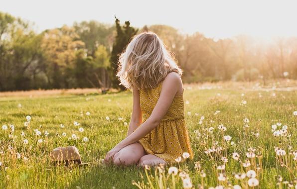 Picture grass, girl, hat, blonde, dandelions