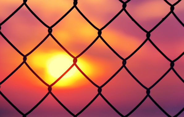 Picture the sky, the sun, sunset, background, mesh, pink, Wallpaper, mood, the fence, fence, the fence, …