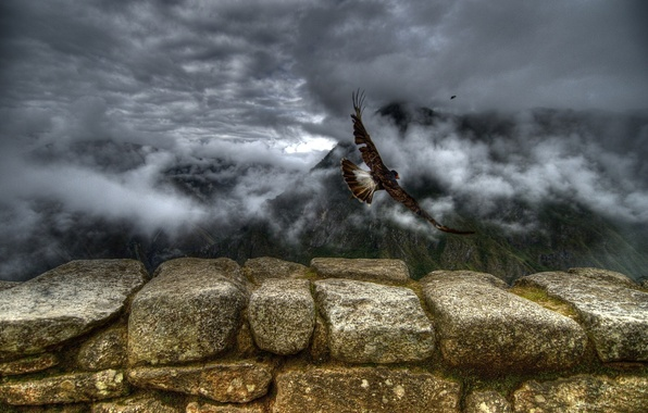 Picture clouds, flight, mountains, stones, Birds