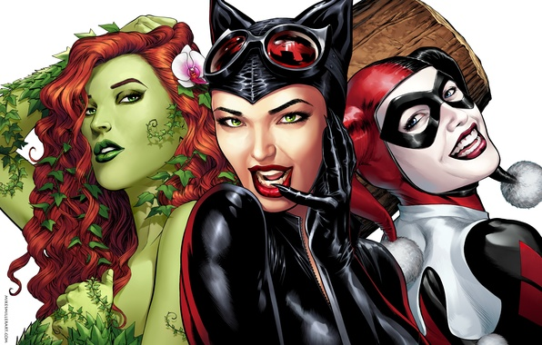Picture the game, art, poison ivy, DC Comics, Catwoman, Selina Kyle, cat woman, Harley Quinn, Harley …
