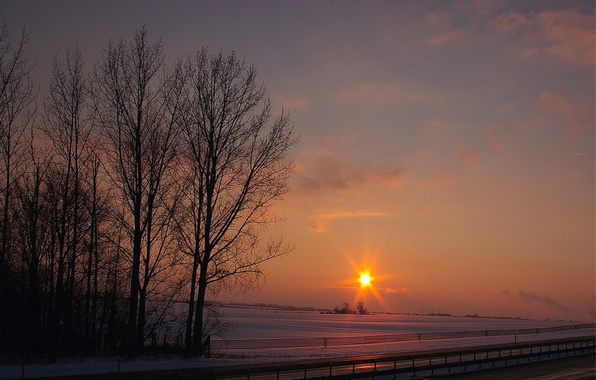 Picture road, field, the sky, the sun, clouds, rays, snow, trees, sunset, orange, track, Winter, the …