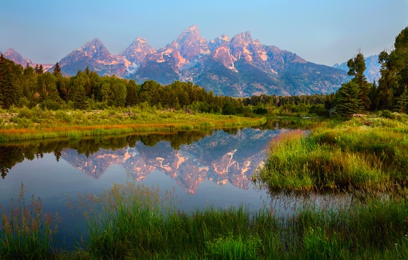 Picture forest, summer, the sky, water, clouds, reflection, mountains, USA, Wyoming, national Park Grand Teton, Schwabachers …