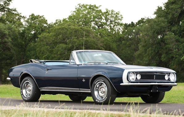 Picture road, trees, Chevrolet, Convertible, Camaro, Chevrolet, Camaro, 1967, the front, Muscle car, Convertible, Muscle car
