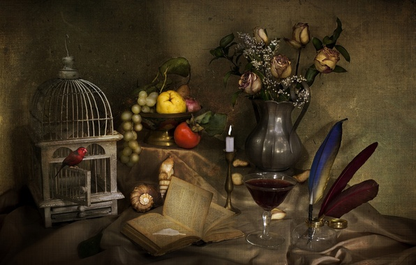 Picture wine, bird, glass, roses, candle, bouquet, texture, cell, feathers, shell, grapes, book, fruit, still life, …