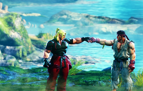 Picture background, the game, fighters, Street Fighter V