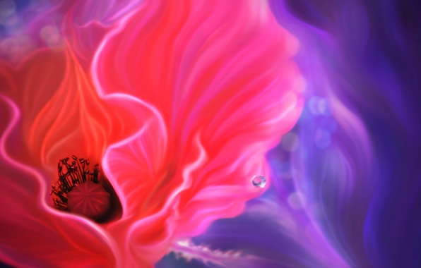 Picture flower, line, Mac, drop, art
