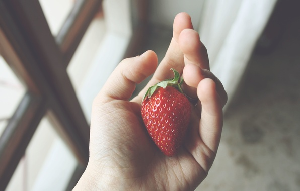Picture hand, strawberry, berry, fingers, red