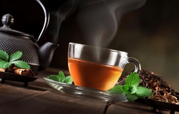 Picture tea, kettle, couples, Cup, leaves, cinnamon, mint, welding