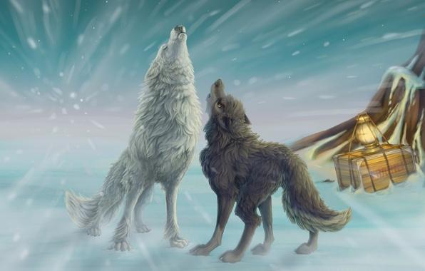 Picture winter, snow, art, lantern, wolves, howl, box, Blizzard