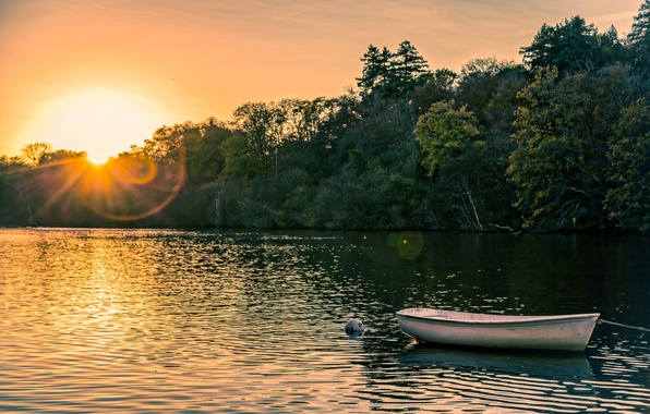 Picture forest, summer, sunset, boat, pond