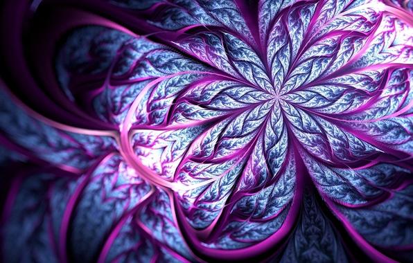 Picture flower, line, petals, blur, art