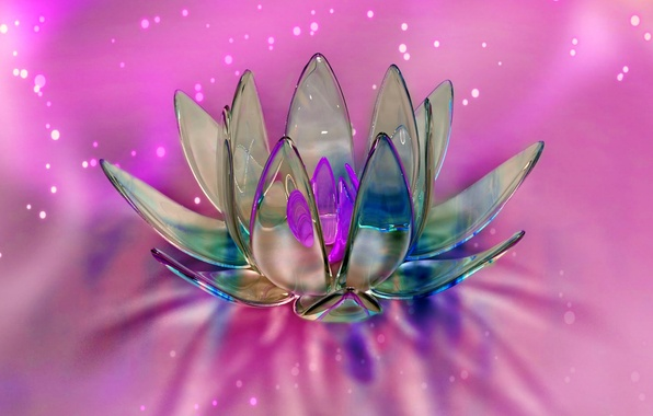 Picture flower, glass, abstraction, petals, the volume