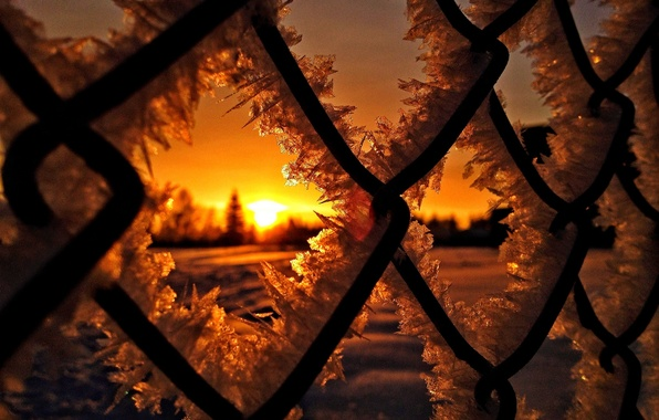 Picture ice, winter, the sun, snow, sunset, nature, sunrise, frost, ice, nature, sunset, winter, snow, sun, …