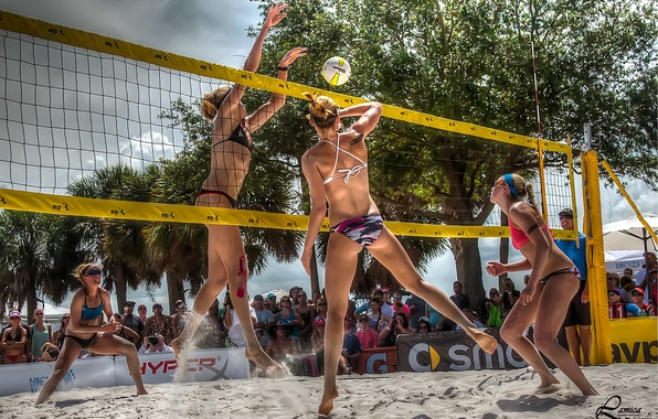 Picture girls, mesh, the game, the ball, hdr, volleyball, submission, beach