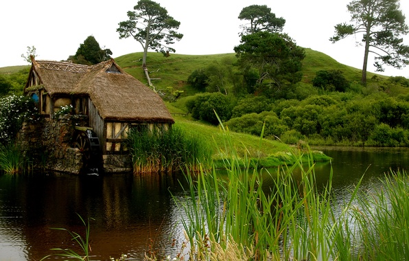 Picture grass, water, flowers, house, pond, hills, mill