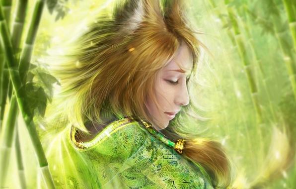 Picture girl, bamboo, art, Fox, kimono, ears, Fox, helen rusovich, bamboo fox