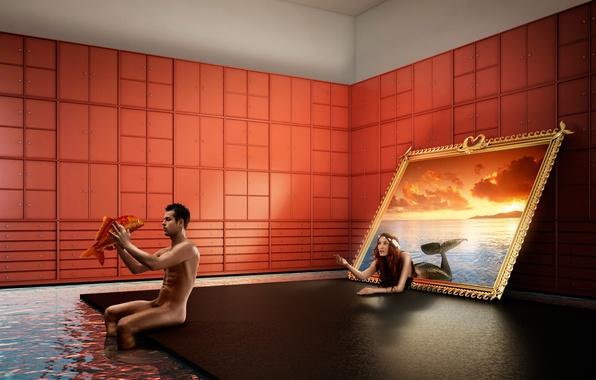 Picture sea, water, sunset, room, mermaid, fish, picture, male