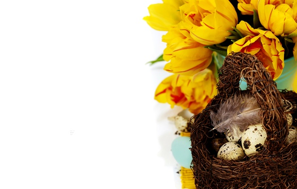 Picture photo, Flowers, Eggs, Basket, Holiday, Different