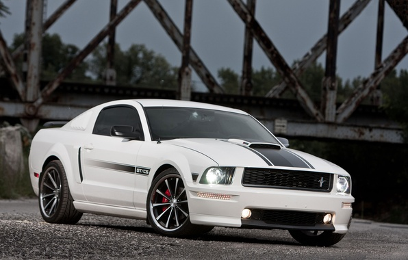 Picture white, bridge, Mustang, Ford, Mustang, white, muscle car, Ford, GT/CS
