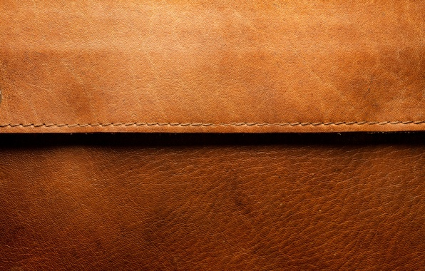 Picture leather, brown, line
