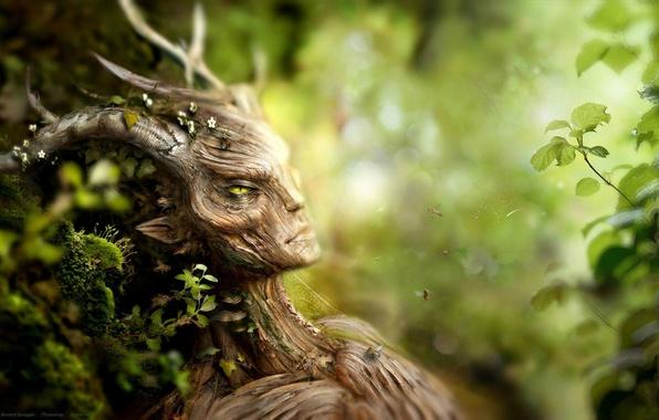 Picture forest, flowers, moss, plants, being, bees, bark, the elder scrolls, skyrim, spriggan