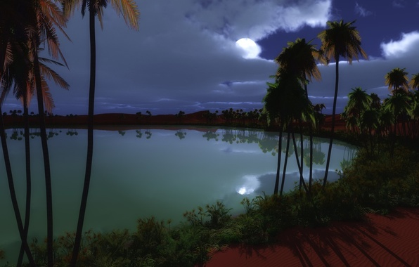 Picture night, lake, palm trees, the moon, oasis
