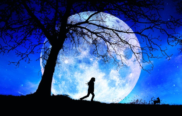 Picture the moon, stars, silhouette, girl