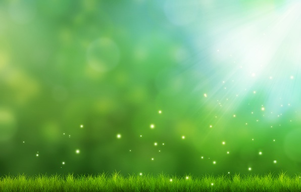 Picture greens, grass, light, background, art, sparks