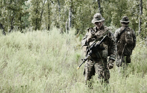 Picture field, weapons, soldiers