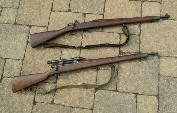 Picture weapons, rifle, store, M1903A3