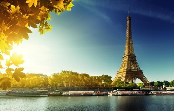 Picture autumn, Paris, Paris, France, autumn, leaves, Eiffel Tower