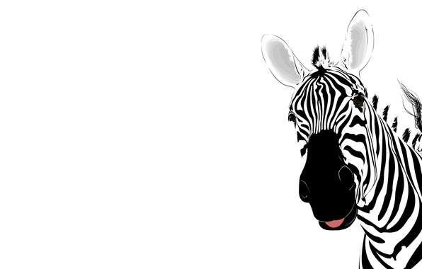 Picture strips, abstraction, Zebra