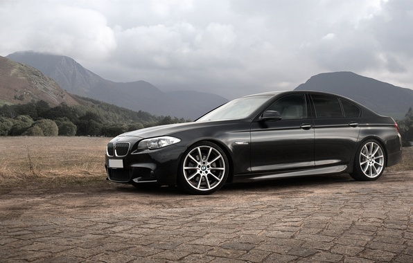 Picture BMW, F10, 5 Series