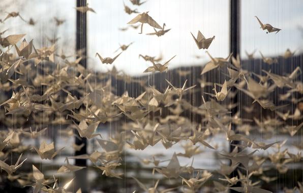 Picture 1000, Origami, cranes