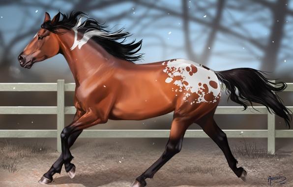 Picture snow, horse, horse, the fence, blur, art, spot, aomori