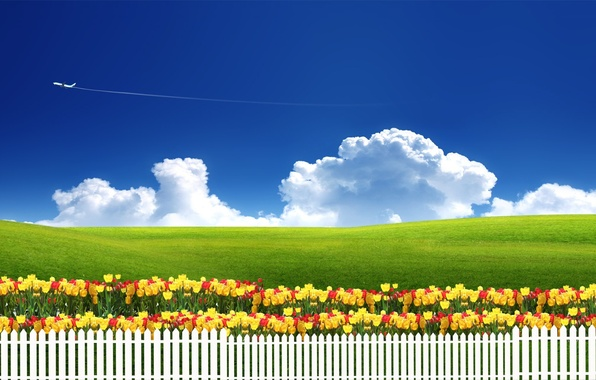 Picture the sky, grass, clouds, flowers, nature, the plane, the fence, meadow, tulips