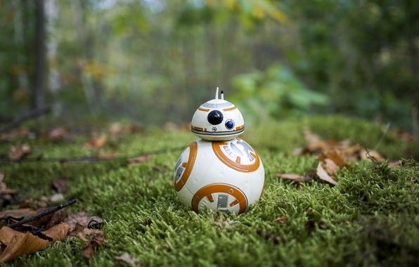 Picture Star Wars, grass, BB-8