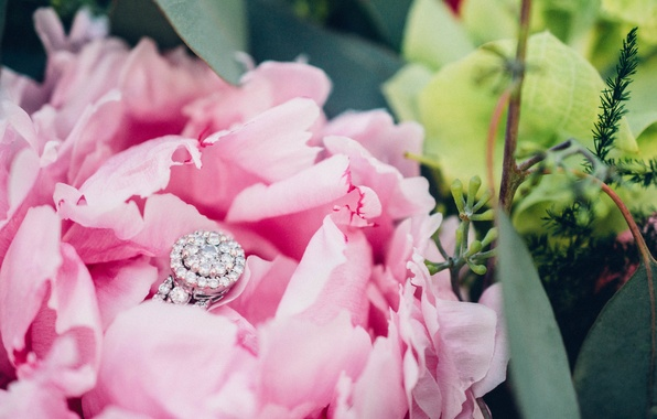 Picture stones, petals, ring, peony